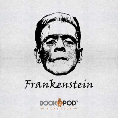 Cover art for Frankenstein: Letter 1