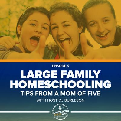Cover art for LARGE FAMILY HOMESCHOOLING: TIPS FROM A MOM OF FIVE