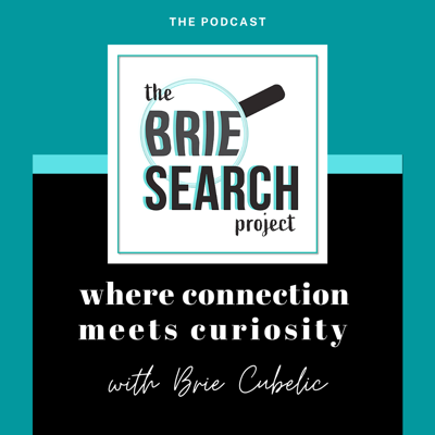 The BrieSearch Project