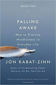 Cover art for 058 Falling Awake: How to Practice Mindfulness in Everyday Life